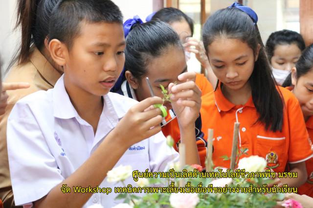 """ศูนย์ความเป็นเลิศด้านเทคโนโลยีชีวภาพพืช มร.ชม. จัด Workshop """"เทคนิคการเพาะเลี้ยงเนื้อเยื่อพืชอย่างง่ายสำหรับนักเรียน"""""""